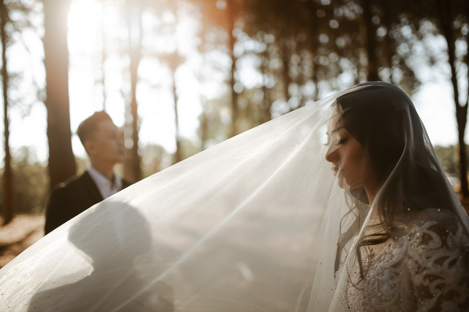 Wanneroo pines wedding shoot and veil